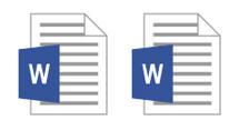 Word Document Copy