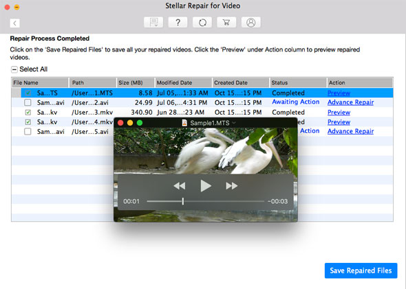 Stellar Repair for Video - Preview and Save Repaired Files