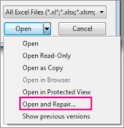 open read only excel vba