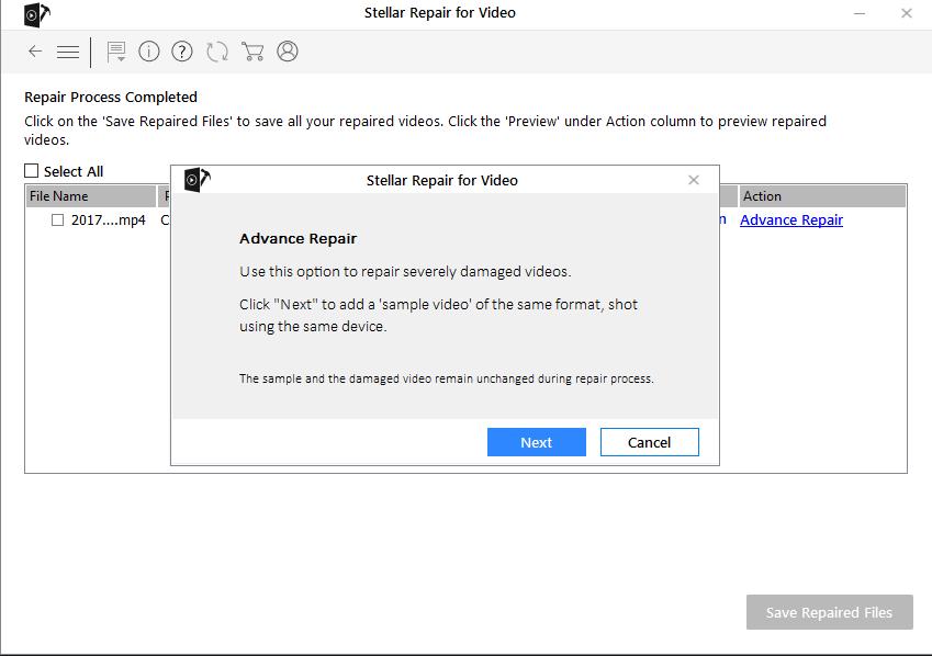Stellar Repair for Video - Sample File