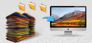 Recover Deleted Large Files on Mac