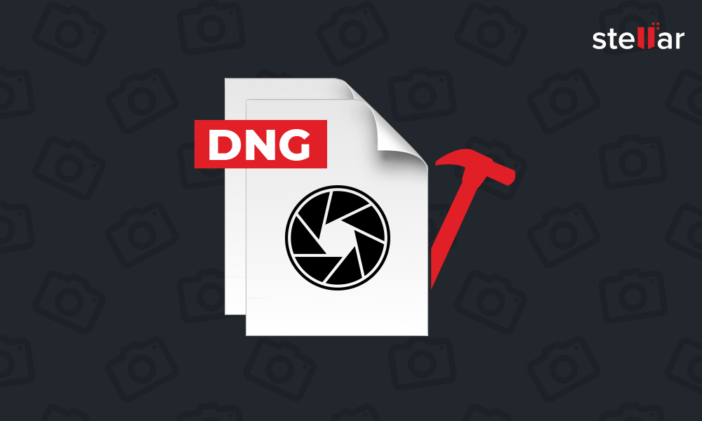 How to Repair DNG Files