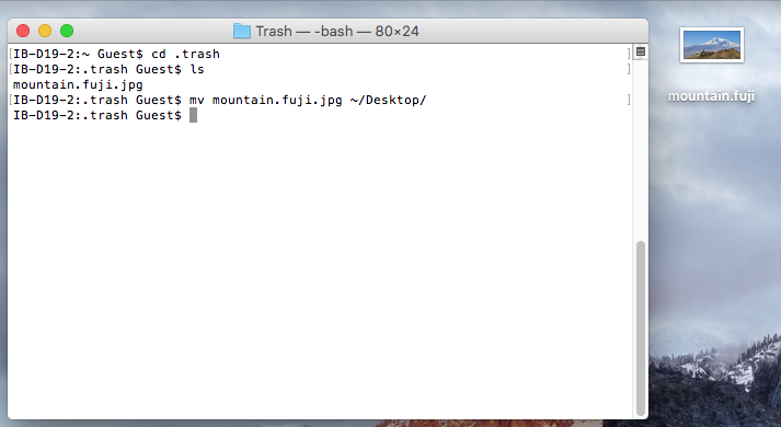 Trash file recovery