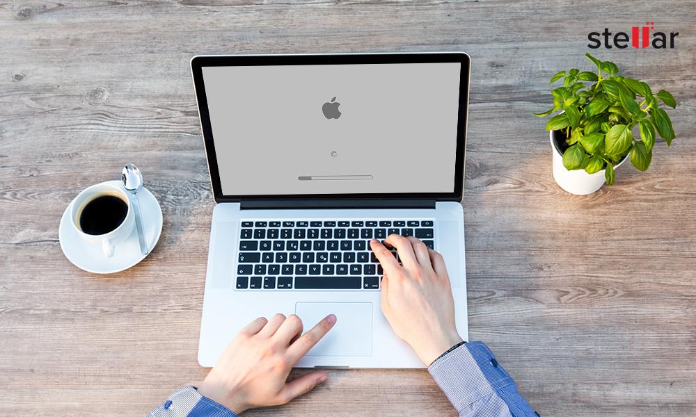 Repair MacBook Gray Screen
