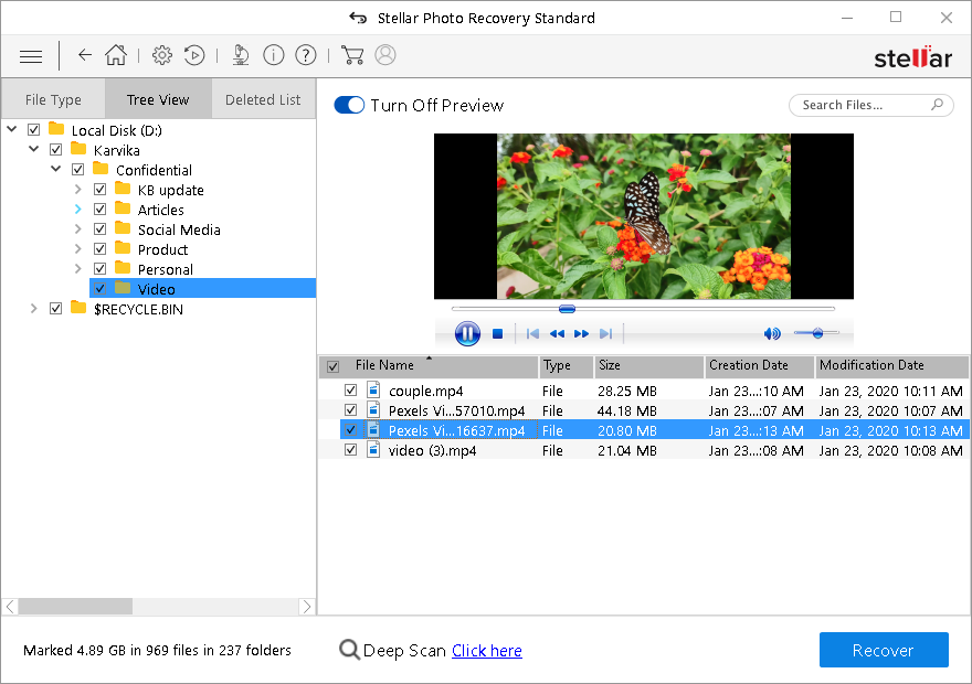 Stellar Photo Recovery Standard - Preview the Recovered Image