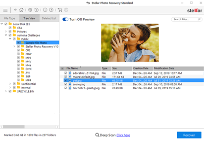 Figure: Preview recoverable PSD files in software