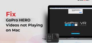 GoPro videos not playing on Mac