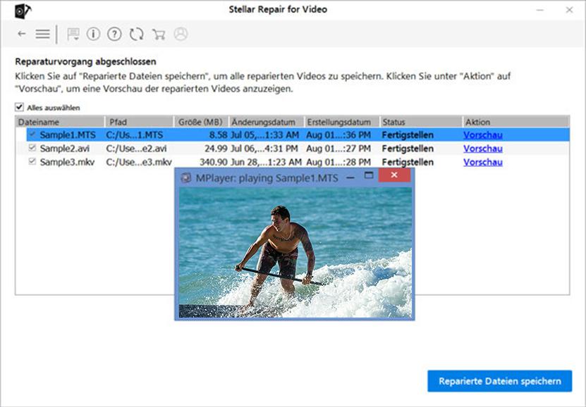 Stellar Repair for Video German- Preview
