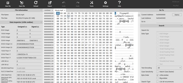 MP4 file data in HexEditor