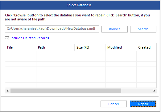 Include Deleted Records Option