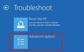 Click Advanced options on Troubleshoot window