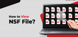 How to view NSF file