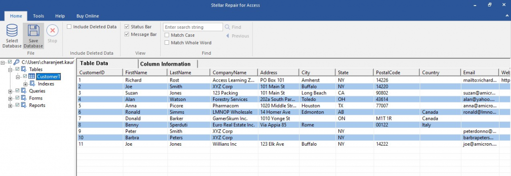 Preview Recoverable Access DB Components