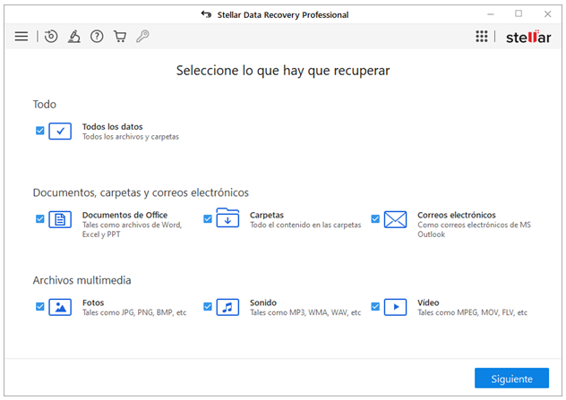 Stellar Data Recovery Professional- Seleccione lo que hay que recuperar