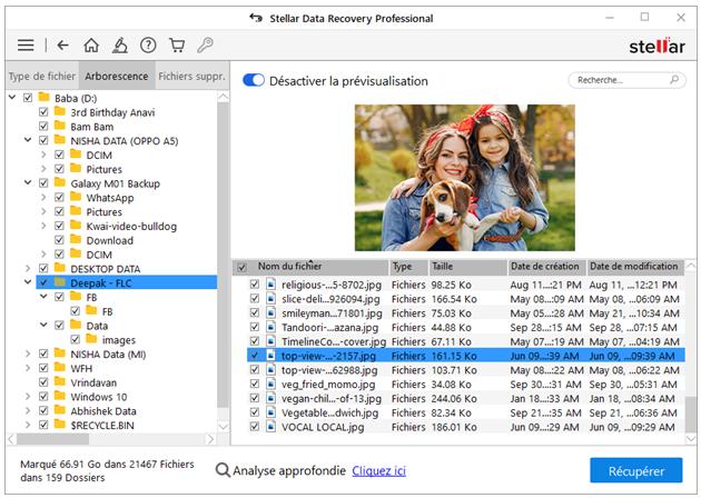 Stellar Data Recovery Professional -Select File