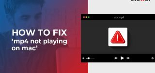 How to fix 'MP4 not playing on Mac'
