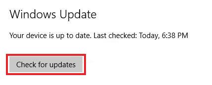 Check Update