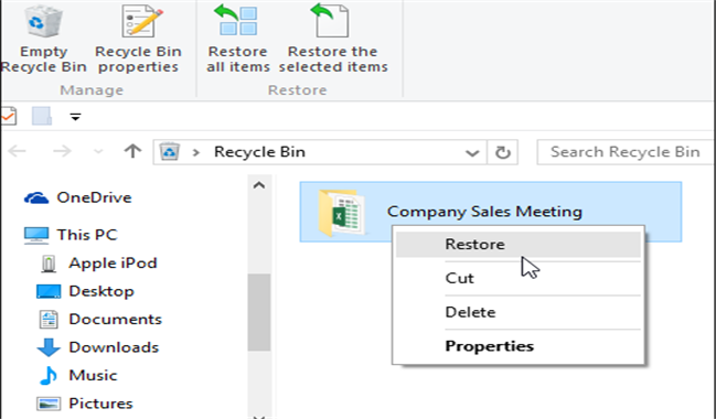 Windows Recycle Bin or Mac Trash Free