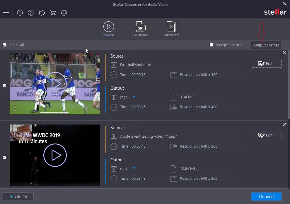 Stellar Audio Video Converter - Output Format