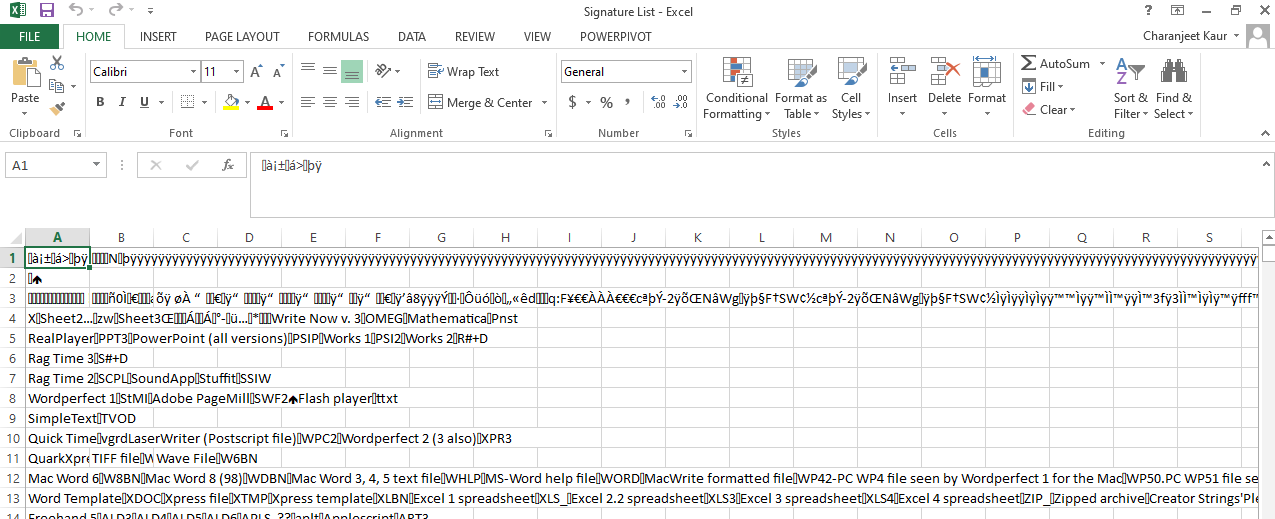 excel file with garbage entries