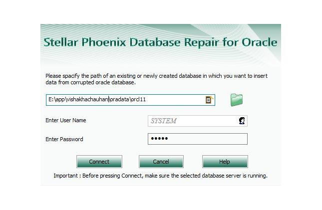 Database Repair for Oracle