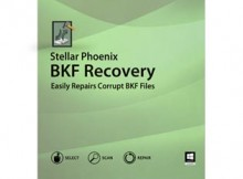 bkf recovery