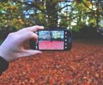 thanksgiving Idea Photographer